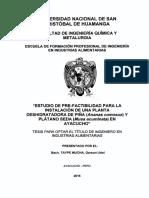 Tesis IA262_Tay.pdf