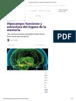 _Hipocampo_ Funciones y Estructura Del Órgano de La Memoria