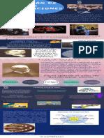 Evolucion de Las Organizaciones Jessica Tatiana Falon Mafla