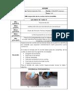Informe 5W-Coches Bases de Canastillas
