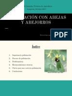 Posibles problemas e n las abejas ManuelaSanchez.pdf