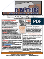 Newsletter Grey Panthers
