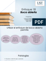 Presentacion Enfoques Voz.