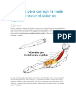 Ejercicios Para Corregir La Mala Postura y Tratar El Dolor de Espalda