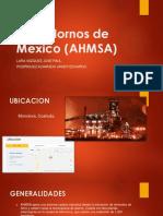 Altos Hornos de Mexico (AHMSA)