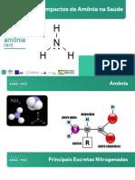 Bioquímica - Impactos da Amônia na Saúde