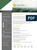 Curriculum Andre Guimaraes Souza