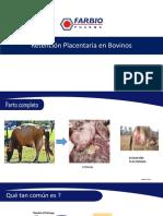 Retención Placentaria en Bovinos 01