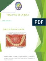 Piso de la boca.pdf