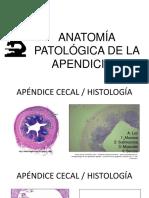 408481014-Apendicitis.pptx