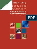 Master GIDE Gestion de l'Information et du Document en Entreprise