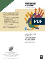 2004人間開発報告書文化の多様性
