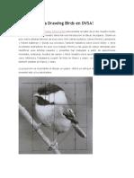 Introducción a Drawing Birds en DVSA