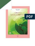 A hermenêutica reconstrutiva como metodologia de pesquisa (ebook-direito-socioambiental)