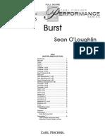 BURST.pdf