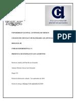 MoralesGarcíaLuisFernando_532_reporte_P1.docx