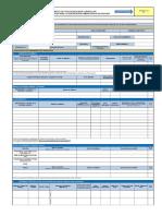 Formato Apn Excel