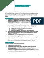 Organización y Administracion de Empresas