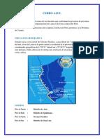 monografia cerro auzl.docx