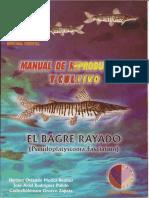 Manual de Reproduccion y Cultivo de Bagre Rayado