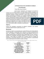 Caracterización Morfoagronomica de Tres Variedades de Calacacin Cucurbita Pepo