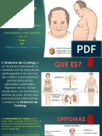 Diapositiva Final Sindrome Cushing