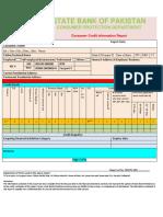 Consumer-Credit-Report-Format.pdf