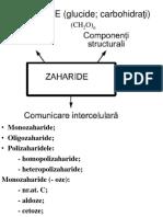 zaharide