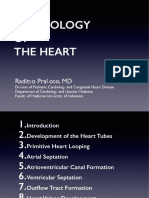 Cardiac Embryology - dr Radit.pdf