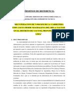 TDR_YAUYOS_AUCO_JOEL.docx