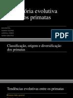 História evolutiva dos primatas.pptx
