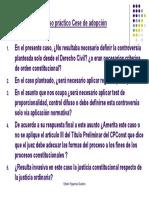 CASO TALLER 1 Caso Cese de adopción Preguntas tentativas.ppt