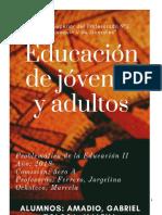 Alfabetizacion en jovenes y adultos