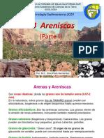 5 PETSED2019 Cap2 4 Areniscas