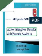 Intangibles Seccion 18