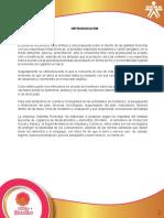 PROTOTIPO DE UN PRODUCTO  Y SU  MERCADO.pdf