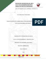 Trabajo de Pracitcas Profesionales (1) (1)