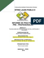 Informe de Practicas Ina II-b