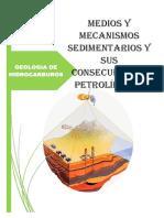 Medios y Mecanismos Sedimentarios y Sus Consecuencias Petrolíferas