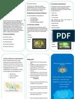 ESCUELAS PENALES.docx