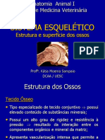 Sistema esquelético II.pdf
