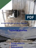 A. Recría de Terneros 06-2016 Parte III-1