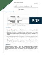 estructura plan global modificado