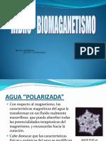 Hidrobiomagnetismo