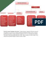 Entrega 7 Semana Mapa Conceptual y Estructura Organizacional