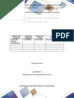 Plantilla Para Entrega de La Fase 1. Definir El Problema e Identificar La Idea de Negocio Innovadora (1)