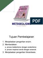 metabolisme-21