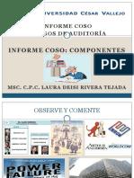 Informe Coso,Riesgo de Auditoria