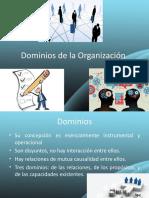 Dominios - Direccion general