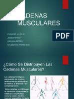 cadenas muscular estatica